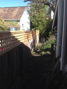 fence-line